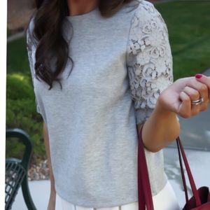 LOFT Gray Lace Short Sleeves Top M